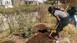 Ebele tilling the land-Spring 2015