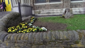 New flowers planted by volunteers!